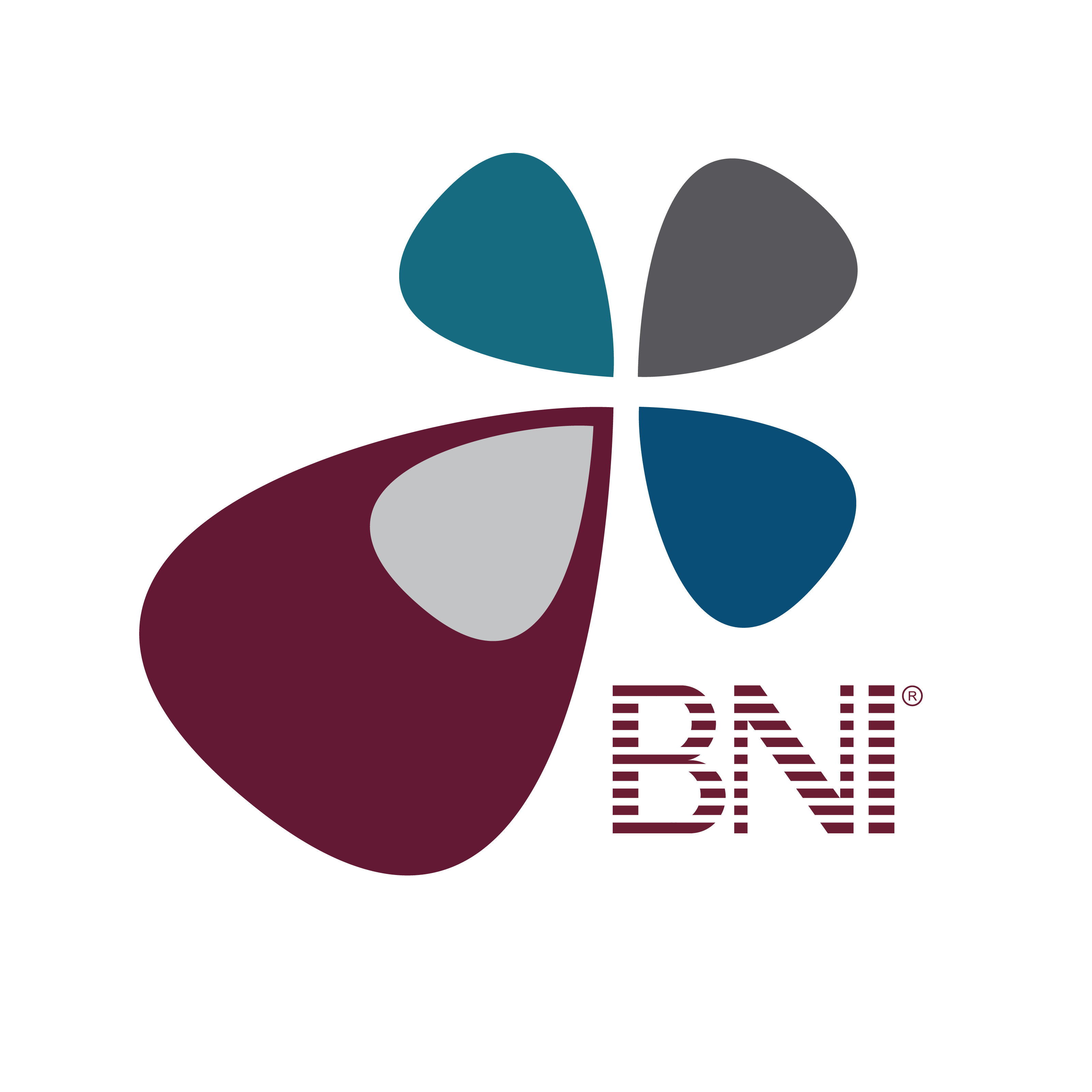 BNI University_elearning