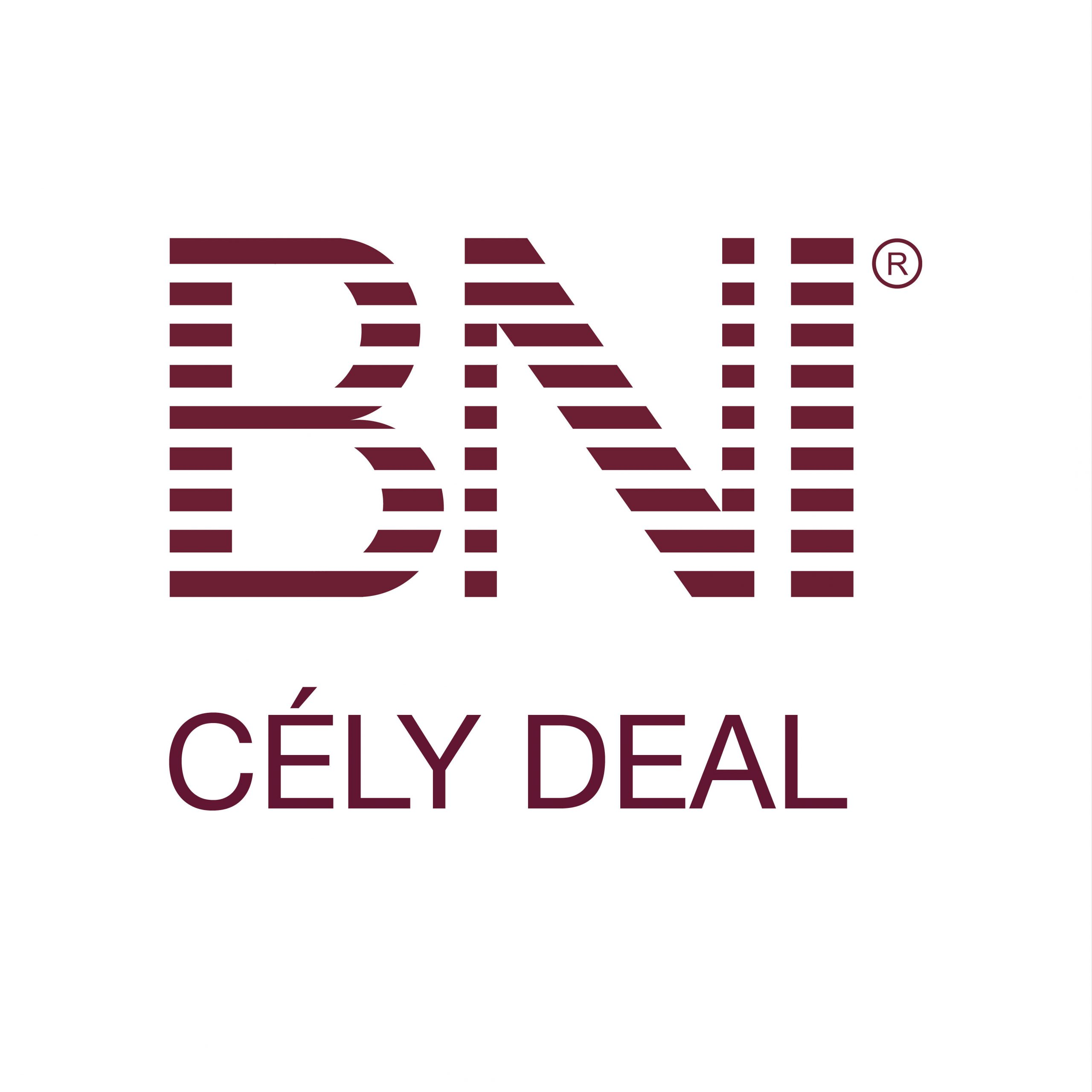 BNI-CELY-DEAL-Seine-et-Marne